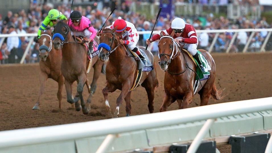 Terapi Pijat sebagai Alat untuk Bersantai Kuda Balap